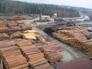 Продам лес кругляк! ООО