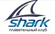 SHARK-Плавание для всех,   обучение взрослых и детей от 5 лет